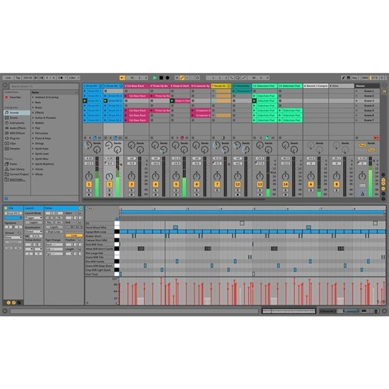 Ableton Live 10 Intro Music Production Software (eLicense