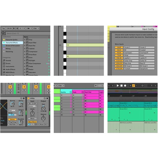 Ableton Live 10 Intro Music Production Software   DAW Software