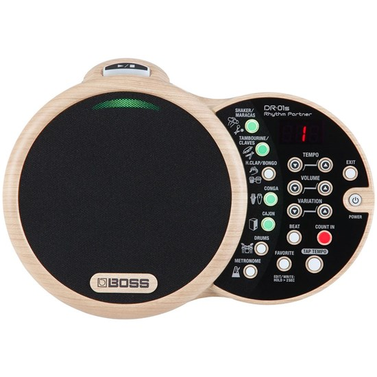 Boss DR-01S Rhythm Partner Virtual Percussionist For Acoustic Musicians