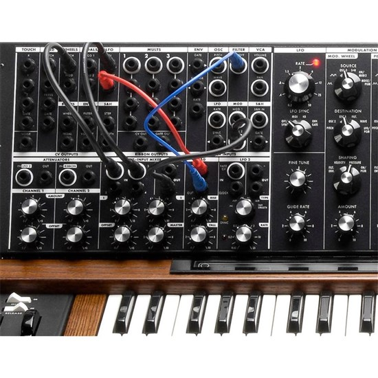 OPEN BOX Moog Minimoog Voyager XL Synthesizer