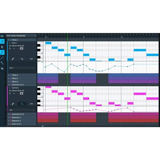 Steinberg Dorico Pro 2 Music Notation Software (Cross-Grade